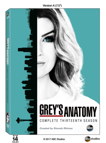 Grey's Anatomy: The Complete Thirteenth Season (Walt Disney Studios Home Entertainment)
